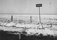 Nagele 1955