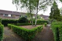 Gemeenschappelijke tuin achterzijde Maarland